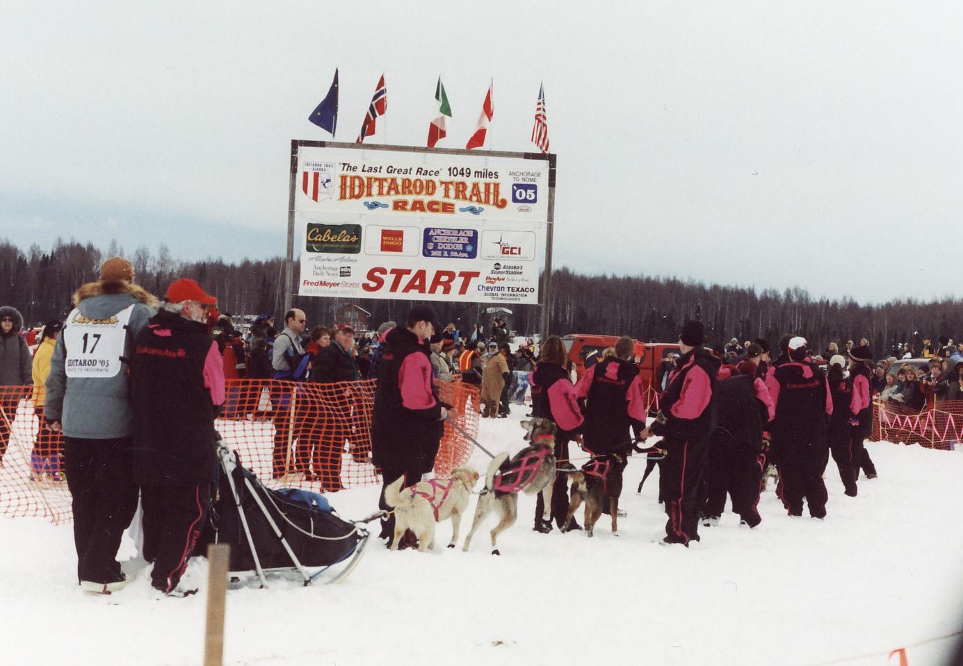 Wordless Wednesday: Iditarod dogs | Go  Do  Be Dog